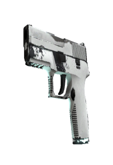 free-p250-whiteout-well-worn.jpg