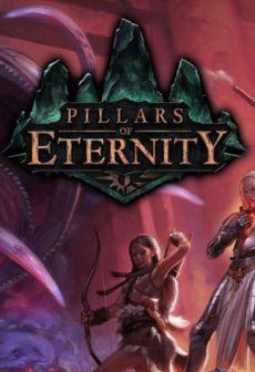 free-pillars-of-eternity-hero-edition.jpg
