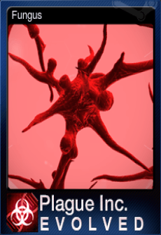 free-246620-fungus