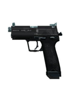 free INTERCEPTOR 45 PISTOL | Splitter, Battle-Worn