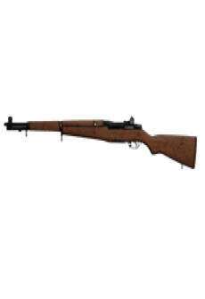free GALANT RIFLE | Desert Stallion, Lightly-Marked