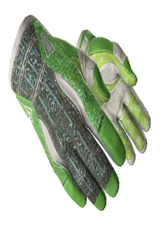 free ★ Sport Gloves | Hedge Maze (Factory New)